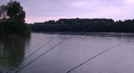 Vízparton - Egy Délelőtt a Dunán